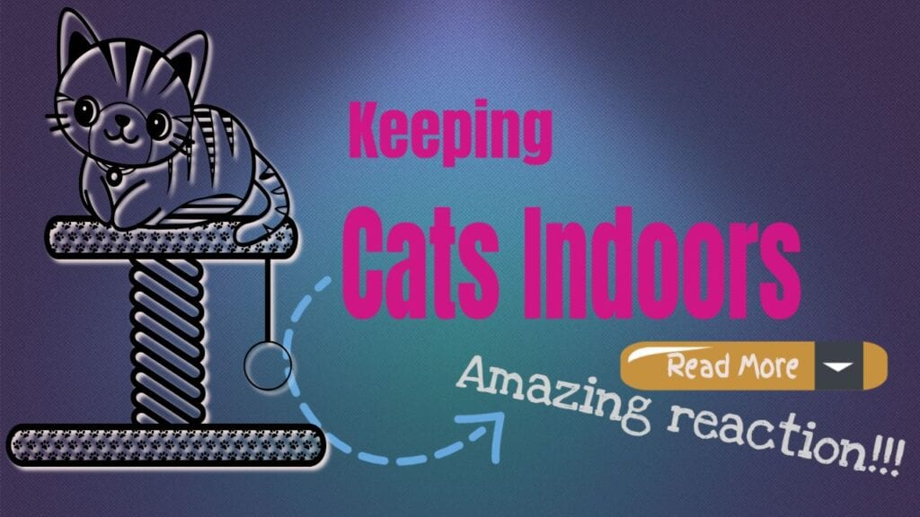 Keeping Cats Indoors